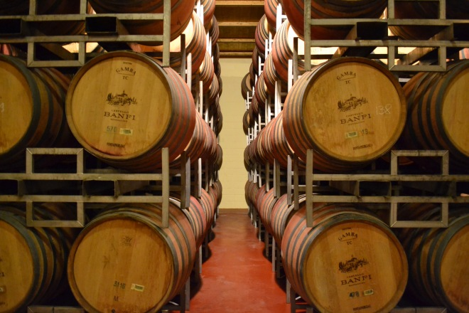 barrel room at castello banfi in montalcino tuscany italy