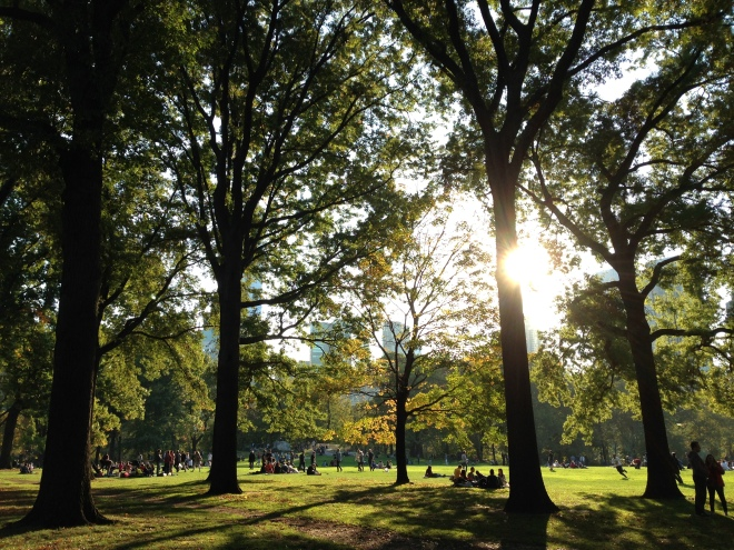 sheep meadow in central park, new york city, fall foliage, autumn