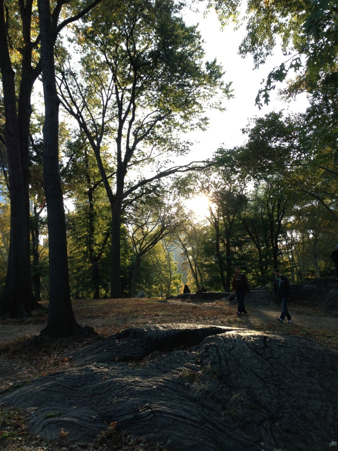 rocks and trees in central park, fall foliage